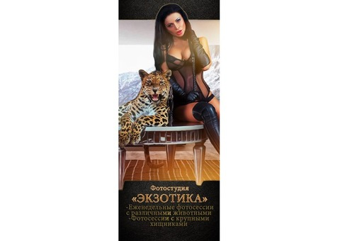ФОТОСЕССИИ С ЖИВОТНЫМИ. Zoo Exotica Project. ФОТОПРОЕКТЫ с животными.