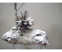 Сувениры из природного материала(
